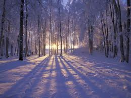 ...its coming! Winter Solstice, the birth of the New Sun!