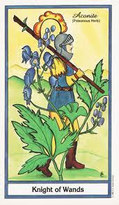 knight of wands herbal tarot