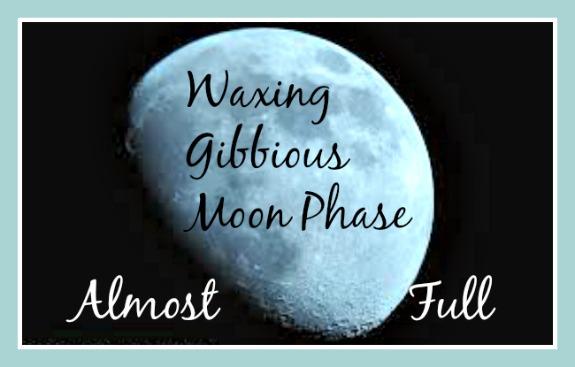 waxing gibbous moon2
