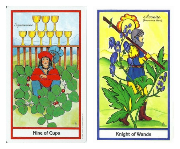 nine-cups-knight-wands