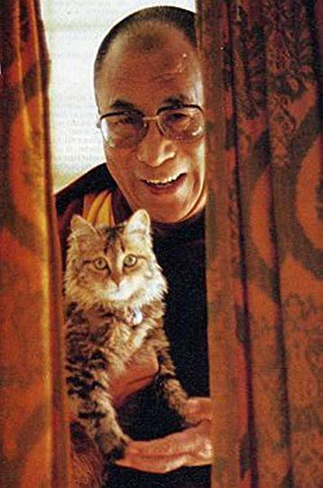 The Dalai Lama and his cat
